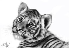 realistic baby animals - Google Search