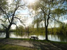Toronto Island Park: Great spot for a bbq!