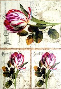 Rice Paper for Decoupage Scrapbooking Sheet Craft Vintage Burgundy Tulips