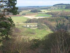 Hulne Priory from Brizlee Tower, Hulne Park, Alnwick