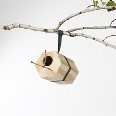 Utoopic: Branch Out With Birdhouses//