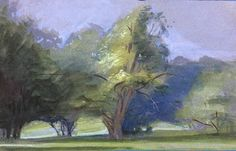 Karen Winslow - Afternoon Light