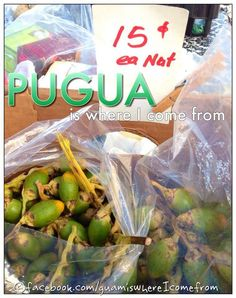 pugua or bettlenut