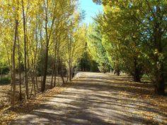 Logroño ciudad - Colecciones - Google+ #autumn