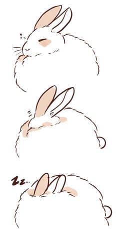 ( - p.mc.n.) ponpekopon:   sleepy bunny *:。(´ㅅ`    )
