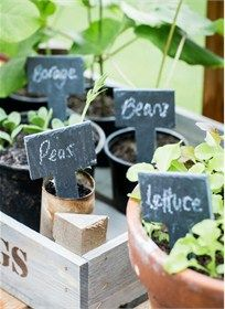 Buy Garden Trading Greenhouse Slate Tags, Set of 6 from our Gardening Equipment range at John Lewis & Partners.
