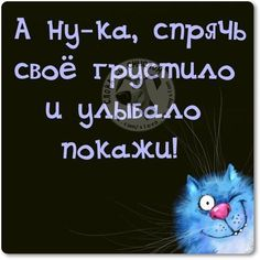 Words with meaning Happy Quotes, Funny Quotes, Mean Humor, Russian Quotes, Funny Expressions, Wit And Wisdom, Status Quotes, Life Philosophy, Quotes And Notes