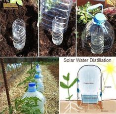 How to make simple solar water distillation system step by step DIY tutorial instructions, How to, how to do, diy instructions, crafts, do it yourself, diy website, art project ideas