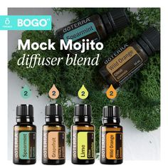 Discover how essential oils can transform the way you manage your health. Essential Oils 101, Essential Oil Perfume, Essential Oil Diffuser Blends, Doterra Diffuser, Doterra Oils, Essential Oil Combinations, Pure Oils, Osho, Diffuser Recipes