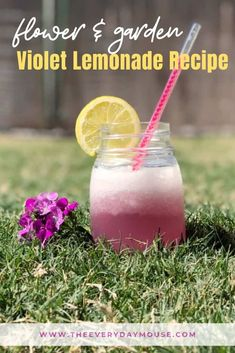 Epcot's Flower & Garden Festival is the highlight of the spring season at Walt Disney World. The flowers are beyond beautiful and kitchen kiosks around the World Showcase offer tasty food and drink choices.  To celebrate a guest favorite, I've put together this easy Violet Lemonade recipe.