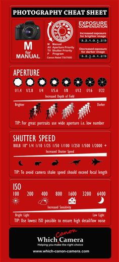 """Brand New Photography Cheat Sheet to help you master your digital camera. Master the Manual Setting! Download a fullsize printable version. #photography tips #digital_cameras""~Someone else"