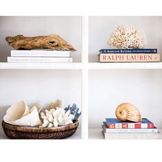 I've been styling and photographing coral today for my online store - there's more involved than I first thought.  Here's one of the pictures I took #coral #birdsnest #tubinara #melomelo #shell #cauliflowercoral #blueridge  #driftwood #decorator #books #ralphlauren #boat #victoriahagan #barclaybutera #platecoral #display #interior #interiors #interiorstyling #coastal  #website #inprogress