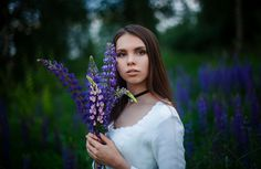 lupine fields - Here you can find me  https://vk.com/club143128608 * https://www.instagram.com/melodyphoto/ * https://www.facebook.com/marie.dashkova