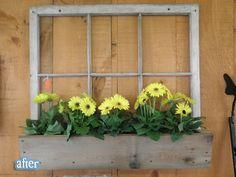 Window window box