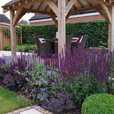 One of my #gardendesign projects from 2014 #suburbangarden #staffordshire #cheshire #englishgarden #plantingdesign #plants #flowers #bees #boxballs #salvia #geranium #sedum #gazebo #oak #outdoorliving #outdoordining #nofilter
