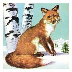 Fox Print by Pop Ink - CSA Images at Art.com