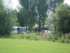 Camping - WeidumerHout