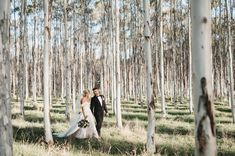 Brown Brothers Winery Photo Gallery   Easy Weddings Wedding Coordinator, Wedding Events, Our Wedding, Destination Wedding, Wedding Photo Gallery, Wedding Photos, Show Photos, Couple Photos, Easy Weddings