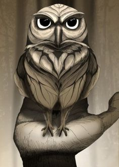 owl animal wild forest nature landscape free illustration brown