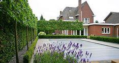 Eindhoven, Garden Pool, Hedges, Landscape Design, Mansions, House Styles, Pools, Gardens, Design Ideas