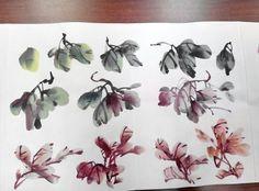 Sumi E Painting, Japan Painting, Chinese Painting, Chrysanthemum Drawing, Chinese Brush, Art Thou, China Art, Painted Books, Traditional Paintings