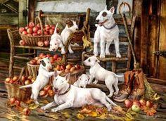 Cuadro de bull terriers : Lo piye y me encanto ... <BR> <BR>Una hermosa familia de bull terriers ! papá, mamá y cachorritos haciendo lo q mejor saben hacer ... jugar y meterse en toos laos y saltar ... <BR> <BR>mañana test de como hacer uan entrevista organizacional para seleccion de personal : una paroximacion superficial y luego una profunda . <BR> <BR>mmm eso noma, osea tengo weas q esribri pero ceo q otro dia, o cerare uan historia ...