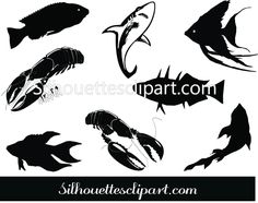 This is a perfect Fish graphics to do awesome vector illustrations like nature and sea vector designs have EPS, PNG, JPEG. Vector Design, Graphic Design, Fish Graphic, Fish Vector, Silhouette Clip Art, Vector Graphics, Vectors, Illustration, Prints