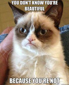 hahahaaa, oh grumpy cat.