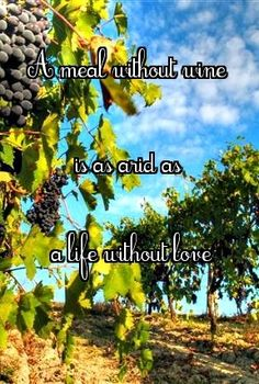A meal without wine is as arid as....