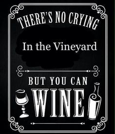Tasting wine is something that a lot of parents, particularly the moms want to do as this allows them to find new wines to drink, but also a wine tasting evening usually means getting away Wine Jokes, Wine Meme, Wine Funnies, Funny Wine, Traveling Vineyard, Wine Craft, Wine Down, Wine Guide, Wine Signs