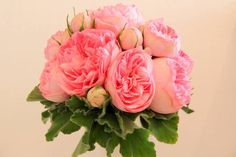 Love! Bridesmaid bouquet with pink garden roses. One of my favorite blooms. Thank you Bonnie @ Ruby Reds Floral & Gardens.