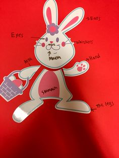 Isn't it more exciting to label body parts on a cartoon character?! Well look no further teachers, you can buy many different cartoon animals such as this bunny and have your students label their body parts. You can have your students write the labels or provide labels and have your students put them where they belong. This can either be accomplished by a small group or an individual student.