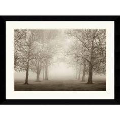 It would be like walking into a foggy grove of trees, silent and cool.. dreamlike...