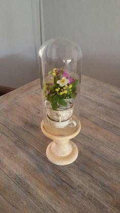 Een mini lentetuintje in de kopjes van oma