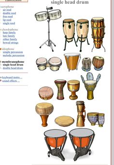 MEMBRANÓFONOS (single head drum). Left/ Right, Up/Down    1.-Timbales: membranophone / drum 2.- Congas: membranophone / drum (Latin America). 3.-  4.- Bongo: membranophone / drum. 5.- Caja (vallenato) 6.- Tabla: India (Asia) 7.- Bayan: India (Asia) 8.- Khanjira 9.- Darbouka : Iran (Arabia)  10.- Tombak : Arabia 11.- Djembe : Africa 12.- Thon: Thailand (Asia) 13.- Rammana: Thailand (Asia) 14.- Kundu : Papua (New Guinea) 15.- Tbilat : Morocco (Africa) 16.- Kettledrums: Europe