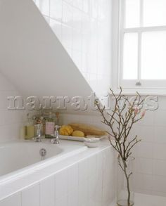 A detail of a modern bathroom with a small tree next to a sloping ceiling above a bath