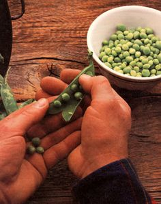 MOTHER'S vegetable garden shares how to grow peas, including the history and horticulture of the pea, what, where, when and how to plant, pests, and how to harvest and store peas. Originally published as