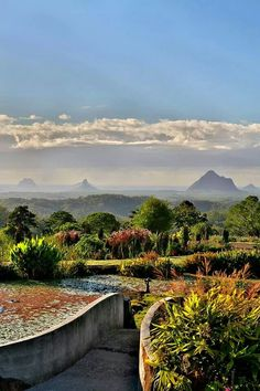 Maleny Botanic Gardens provide a great view of the majestic Glasshouse Mountains,  Sunshine Coast, QLD.