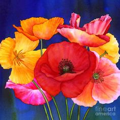Poppies Painting by Hailey E Herrera