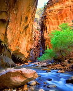 "The Virgin River enters Zion National Park thur ""The Narrows"".This photograph required hiking approximately 3 miles into the narrows by way of the river. Oh The Places You'll Go, Places To Travel, Places To Visit, Fjord, Zion National Park, Zion Park, Bryce Canyon, Zion Canyon, All Nature"