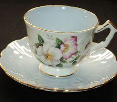 AYNSLEY WILD ROSES POSH simplyTclub Tea cup and saucer