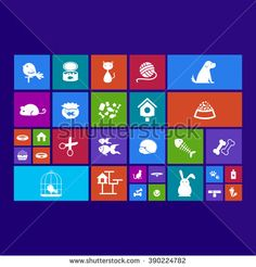 Trendy computer or mobile application app program of flat pet animal and accessories object icon menu in colorful geometric square block window background, create by vector