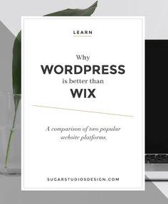 Why WordPress is Bet