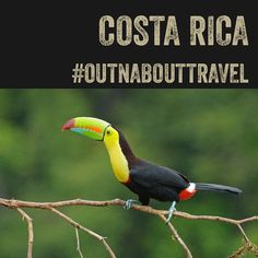 Want to go to #costarica on #gadventures with #outnabouttravel