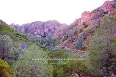 PINNACLES NATIONAL PARK CALIFORNIA Fine Art Prints | Framed | Canvas | Metal | Acrylic | Wood | Stock Photos PINNACLES NATIONAL PARK, CALIFORNIA, UNITED STATES OF AMERICA Stock photo canvas framed fine art print ID: 150416-0044_PINNACLES_CALIFORNIA © ROBERT WOJTOWICZ / RWIMAGES.COM Stock photo canvas framed fine art print keywords: AMERICA, ART, ARTISTIC PINNACLES NATIONAL PARK CALIFORNIA PHOTOGRAPHY, BUY PINNACLES NATIONAL PARK CALIFORNIA PHOTOGRAPHIC PRINTS FINE ART FOR SALE, CA…