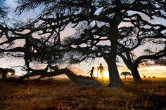África do Sul Foto: Steve McCurry