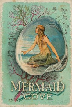 Vintage Mermaid Cove Sign Tin Sign - AllPosters.co.uk