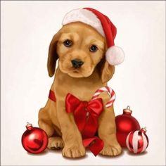 Check out the deal on Cazenave Holiday Puppy Art Ceramic Accent & Decor Tile - at Artwork On Tile Online Storefront Christmas Puppy, Christmas Animals, Christmas Pictures, All Things Christmas, Christmas Time, Vintage Christmas, Christmas Crafts, Christmas Decorations, Xmas