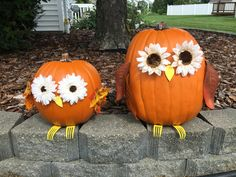Pumpkin carving ideas to decorate your home for Halloween season > Detectview Owl pumpkins with flower eyes and forks for feet. Halloween Owl, Halloween Season, Halloween Pumpkins, Halloween Crafts, Halloween Decorations, Halloween Themes, Owl Pumpkin Carving, Amazing Pumpkin Carving, Pumpkin Painting