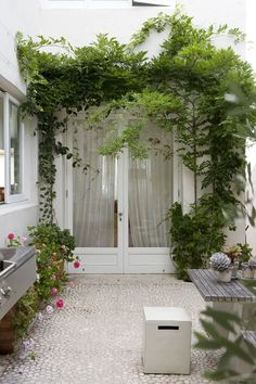 Internal courtyard paving/pebbles and greenery